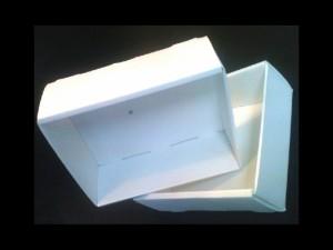 Polypropylene boxes Ambalaje Plastic   Ambalaje Din Plastic