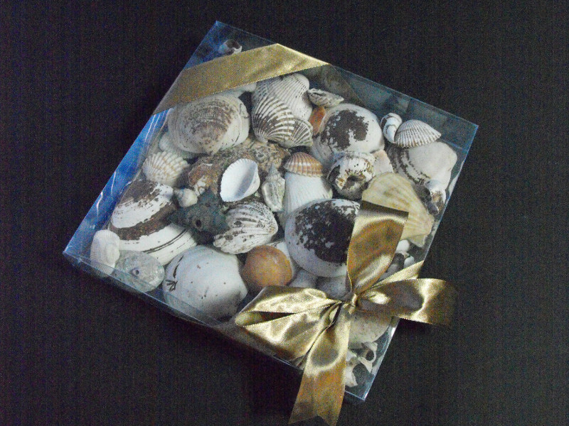 decorative boxes wholesale Ambalaje Plastic | Ambalaje Din Plastic