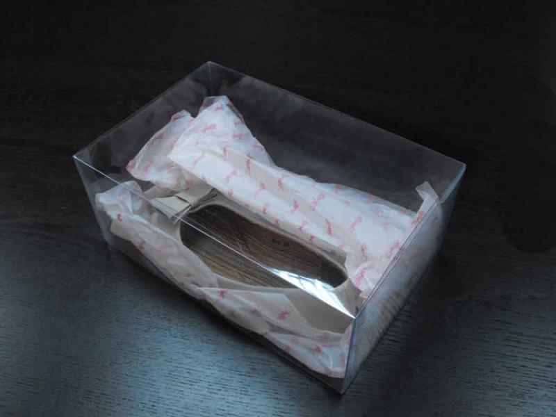 Cutii din plastic pentru pantofi