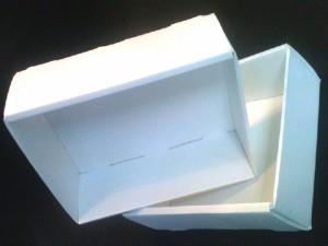 tavi-tehnologice-automotive-51-13 Ambalaje Plastic | Ambalaje Din Plastic