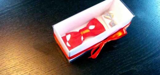 bowtie packaging Ambalaje Plastic   Ambalaje Din Plastic