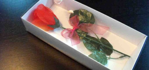boxes for roses packaging Ambalaje Plastic | Ambalaje Din Plastic