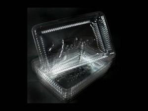 caserole-prajiturele-caserole-plastic-prajiturele-613-4