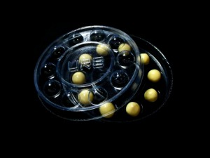 chesa-rotunda-pentru-bomboane-476-6 Ambalaje Plastic | Ambalaje Din Plastic
