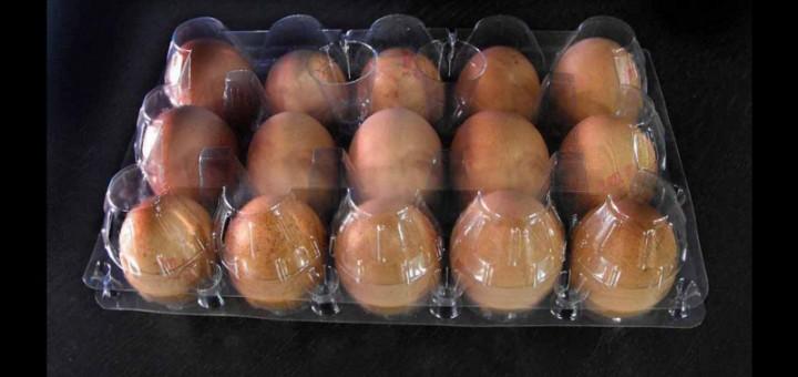 Cofraje plastic 15 oua gaina