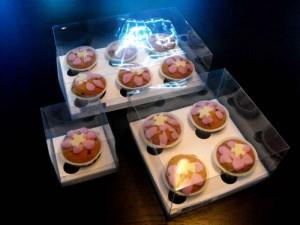 cutii-briose-cutii-plastic-cu-insert-briose-924-2