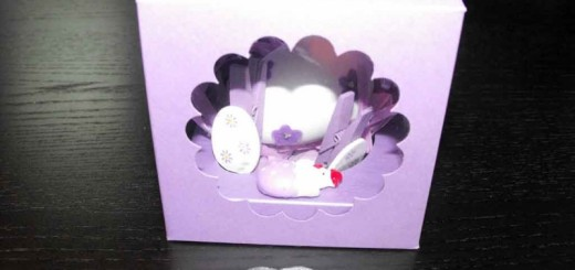 Cutii carton colorat cu fereastra plastic Ambalaje Plastic | Ambalaje Din Plastic