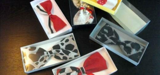 Cutii pentru papioane Ambalaje Plastic | Ambalaje Din Plastic