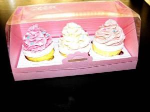 3 cupcake box