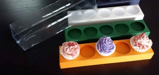 Cutii cu insert mini cupcakes Ambalaje Plastic | Ambalaje Din Plastic
