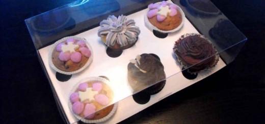 Cutii plastic cu insert 6 muffins, cutii briose, cutii cupcakes