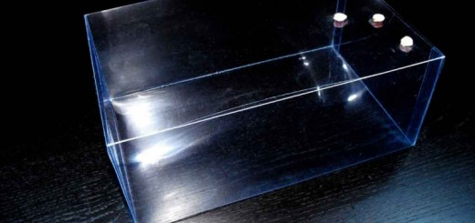 Cutii plastic pentru torturi, minitorturi, prajituri