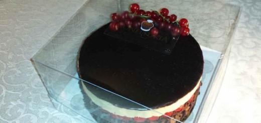 Cutii plastic pentru tort