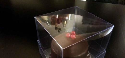Cutii plastic prajitura