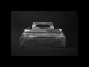 cutii-torturi-cutii-plastic-tort-447-2 Ambalaje Plastic | Ambalaje Din Plastic