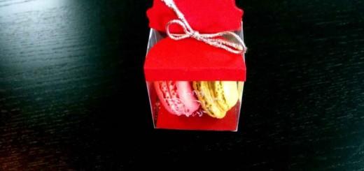 Cutiute plastic Macarons Ambalaje Plastic | Ambalaje Din Plastic
