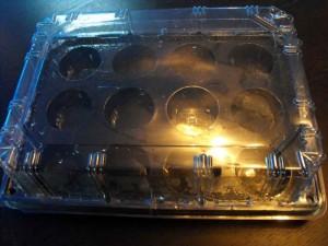 tavi-plastic-muffins-tavi-plastic-briose-tavi-plastic-madlene-629-3 Ambalaje Plastic | Ambalaje Din Plastic