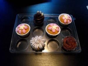 Cupcake plastic trays wholesale
