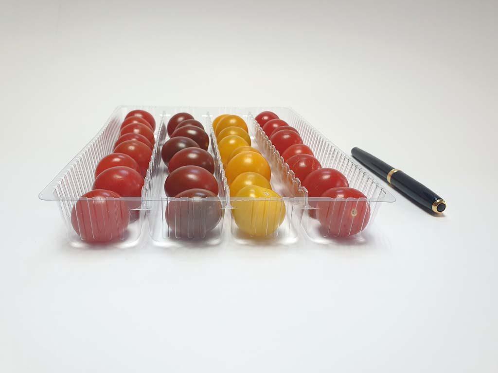 4105 - fructe si legume (3)