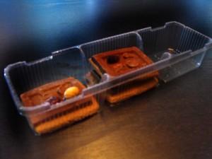 caserola-biscuiti-cu-ciocolata-667-2 Ambalaje Plastic   Ambalaje Din Plastic