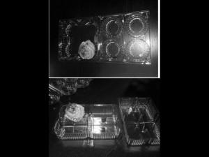 caserola-plastic-cupcakes-muffins-718-3 Ambalaje Plastic | Ambalaje Din Plastic