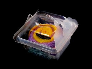Mini cake plastic boxes