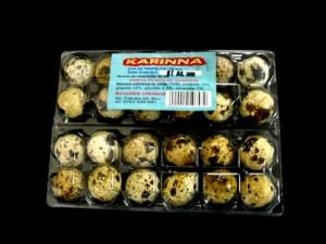 24 compartments quail eggs casserole Ambalaje Plastic | Ambalaje Din Plastic