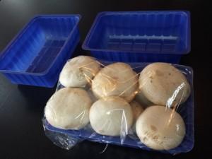 Mushroom plastic containers