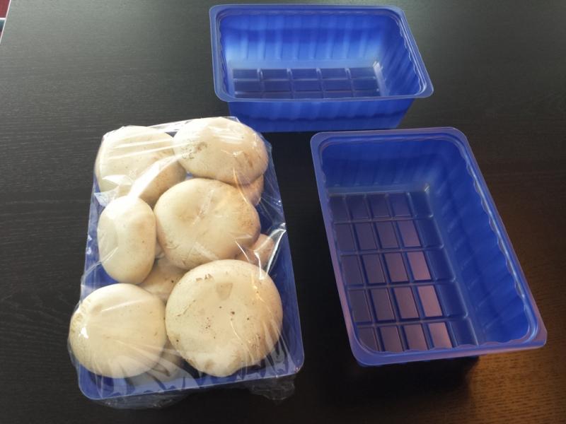 caserole-plastic-pentru-ciuperci-383-8