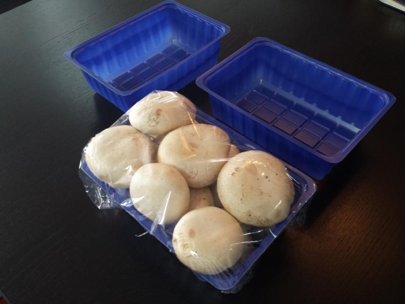 caserole-plastic-pentru-ciuperci-383-9