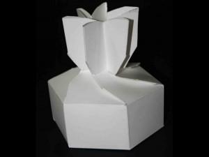 Chocolate praline box Ambalaje Plastic | Ambalaje Din Plastic