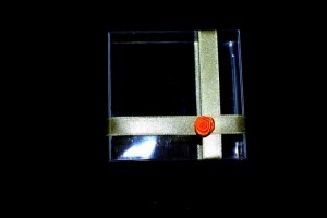 cutiute-plastic-marturii-de-nunta-cutiute-martisoare-837-5