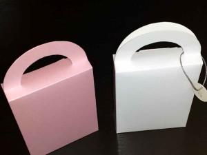 Paper gift bags Ambalaje Plastic | Ambalaje Din Plastic