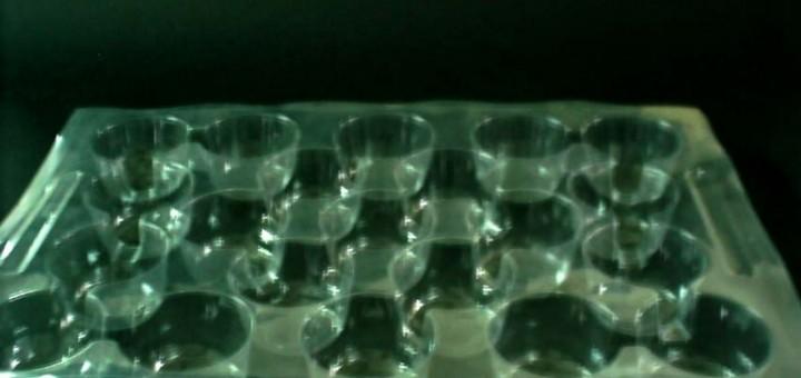 Suporturi din plastic pentru rasaduri