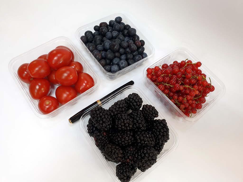 4089 - afine, coacaze, afine, rosii cherry (2)