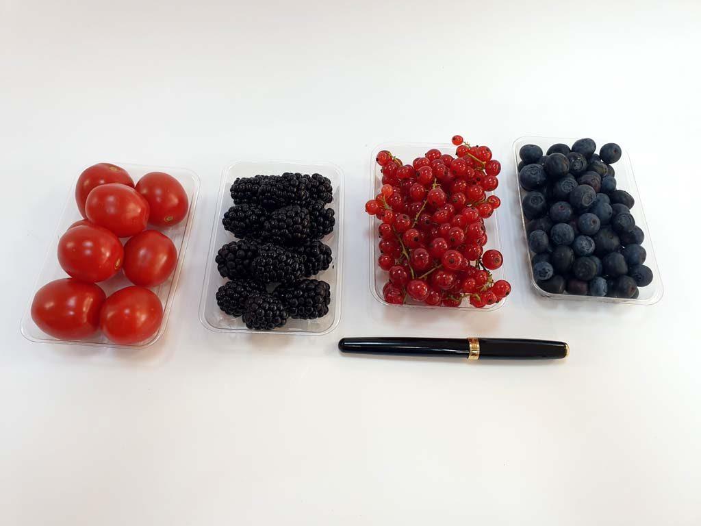 4094 - afine, mure, coacaze, rosii cherry 2